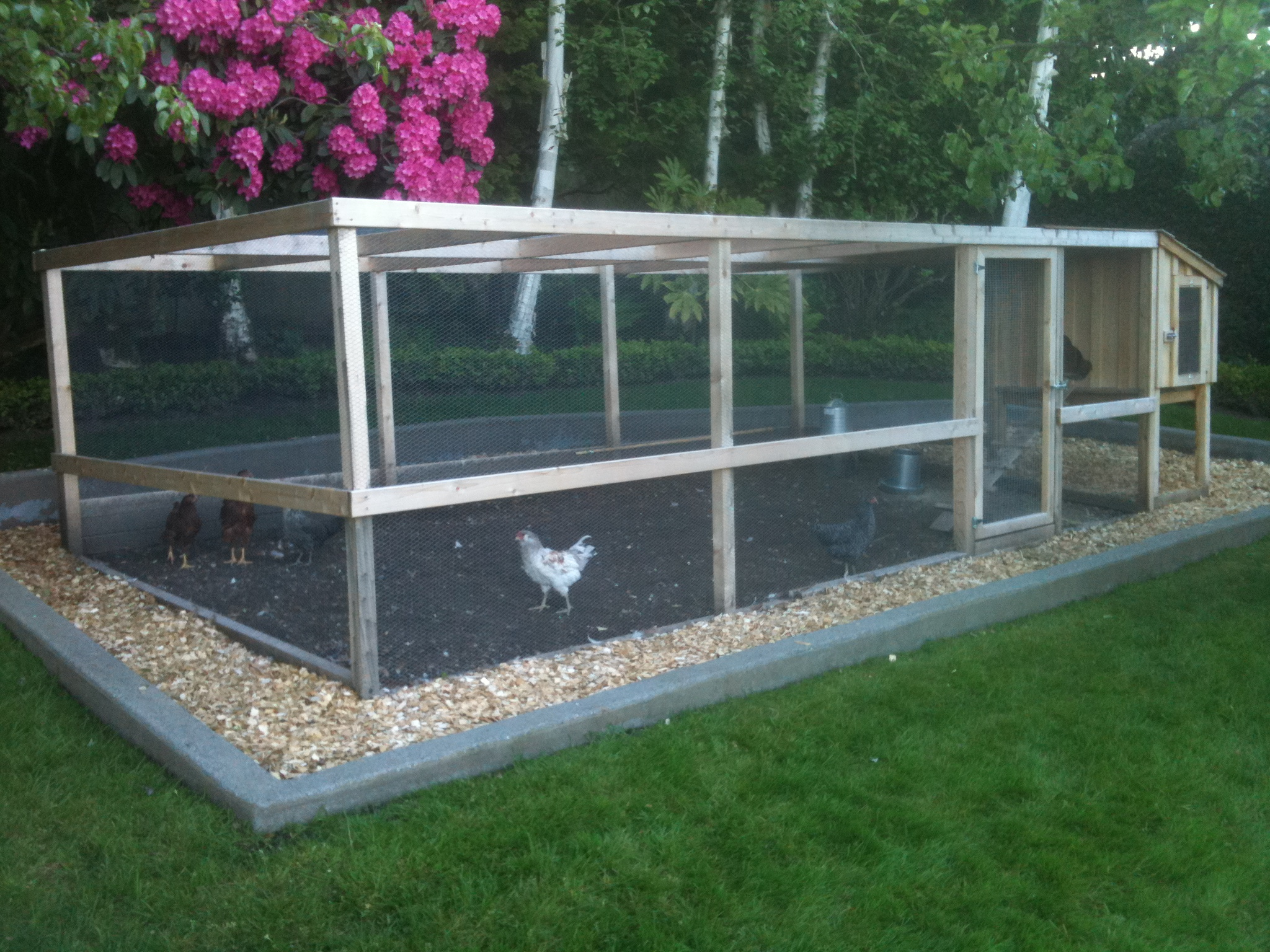 Chicken runs saltbox designs for Chicken enclosure ideas