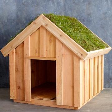 William Sonoma Dog House Saltbox Designs