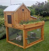 Saltbox Coop with Planter